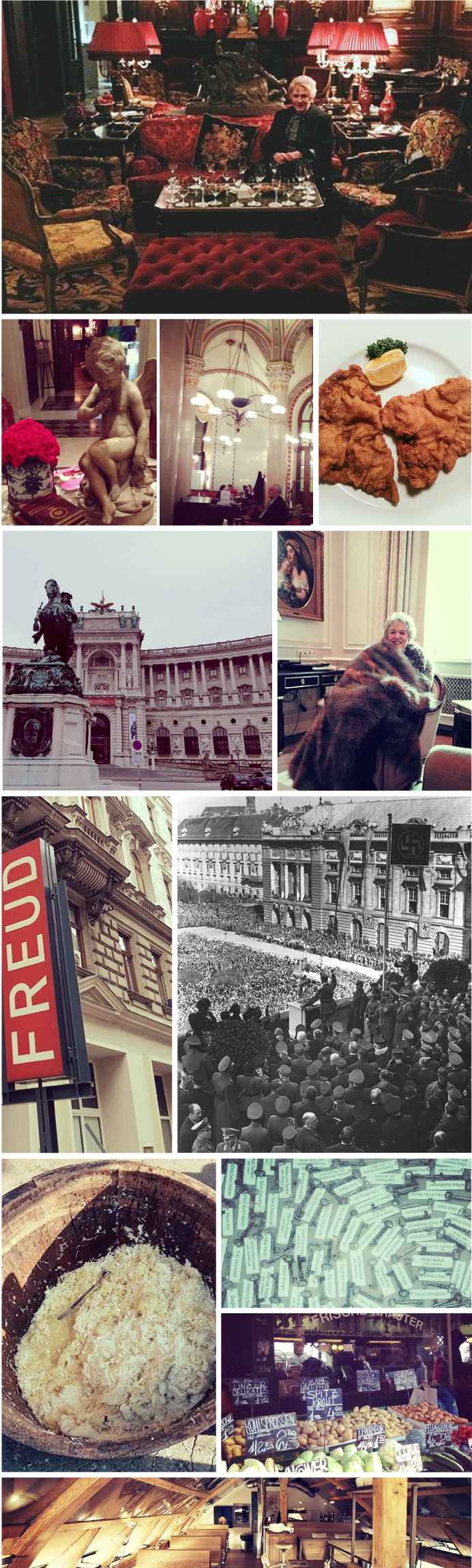 Wanderlust Vienna Collage